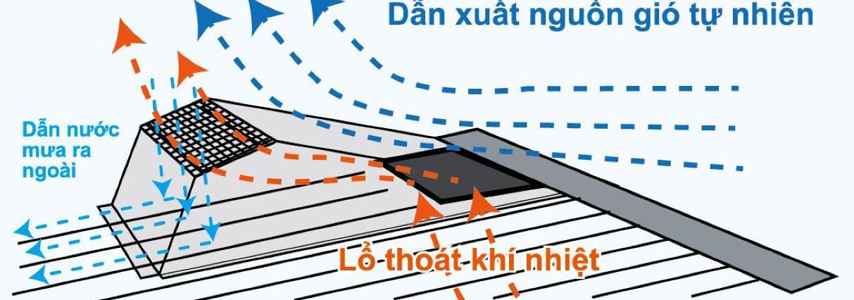 Thải Nhiệt Bernoulli